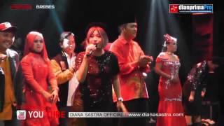 Tetep Demen Diana Sastra | DIAN PRIMA LIVE | Brebes 21/01/2017