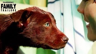 Nonton RED DOG: True Blue | Official Trailer - Family Movie [HD] Film Subtitle Indonesia Streaming Movie Download