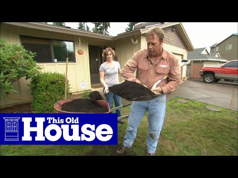 How To Fix A Patchy, Weedy Lawn | This Old House