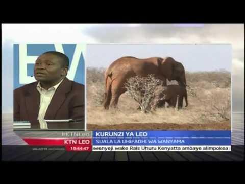 Kurunzi ya leo: Suala la usalama wa ndovu, 26/8/2016