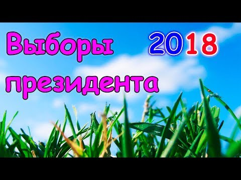 Мы ездили на выборы президента 2018г. (03.18г.) Семья Бровченко. - DomaVideo.Ru