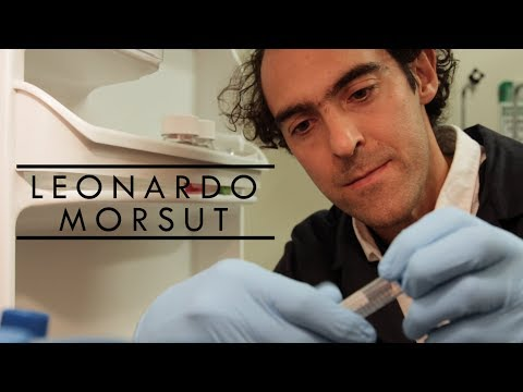 Meet USC Stem Cell scientist and former professional volleyball player Leonardo Morsut
