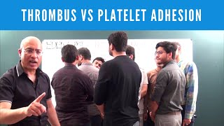 Dr. Najeeb explains the difference between Platelet Adhesion, Platelet Aggregation & Platelet Plug. See our video library at https://www.DrNajeebLectures.com