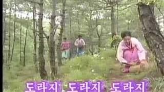 도라지 (Toraji) - ľudová pieseň o rastline