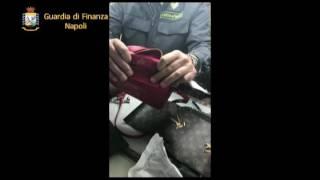 contraffazione-maxi-blitz-della-finanza-ad-afragola