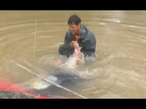 Mężczyzna ratuje kobietę i jej psa z tonącego samochodu