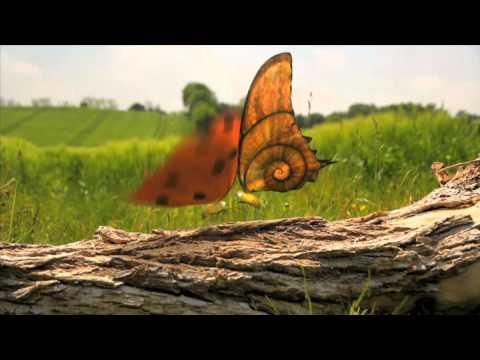 Minuscule Teaser Saison 2 (видео)