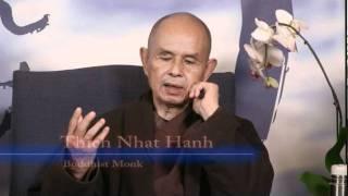 David Suzuki&thich Nhat Hanh