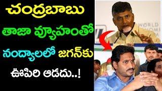 Chandrababu Dual Strategy On Nandyal