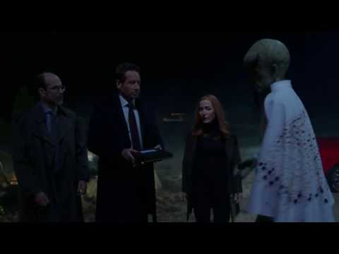 The X-Files: Aliens Build A Wall to keep aliens out.