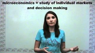 Microeconomics Versus Macroeconomics