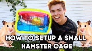 How to PROPERLY setup a SMALL Cage for a HAPPY & HEALTHY Hamster!!! by Tyler Rugge