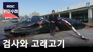 Video 검사와 고래고기 [FULL] -prosecutor and whale meat-18/02/20-MBC PD수첩 1143회 MP3, 3GP, MP4, WEBM, AVI, FLV Agustus 2018