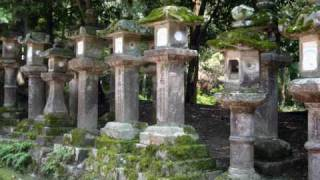 japan tribute (dear 5 peter whitehead music)