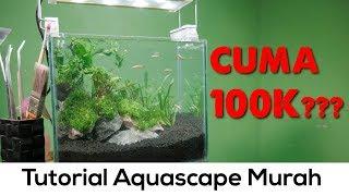 Download Video Aquascape rimbun tanpa bikin dompet gersang (Tutorial Aquascape 30cm Natural) Pojok tutorial #2 MP3 3GP MP4