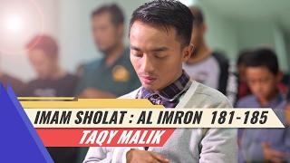 Imam Sholat - Taqy Malik - Surat Ali Imron 181-185 (4K)