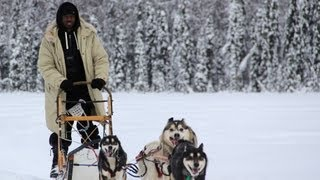 How to Dog Sled with Champ Dallas Seavey!