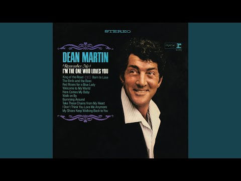 The Birds and the Bees (Song) by Dean Martin