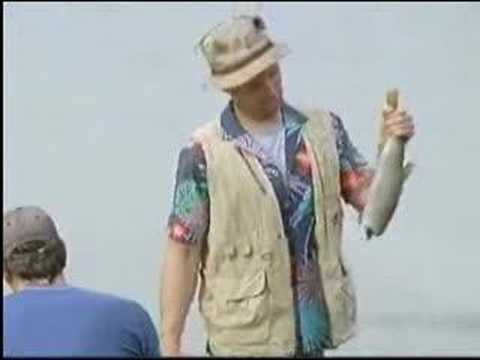 Labatt Blue Light- Fish Commercial