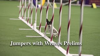 Jumpers with Weaves Prelims