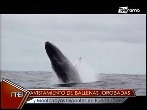 Parque Nacional Machalilla Puerto López retoman actividades con protocolos