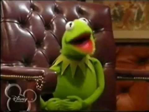 Kermit The Frog Goes Crazy!