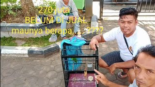 Download Video 270 juta, BELUM DI JUAL.... MP3 3GP MP4