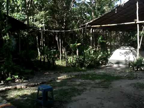Video av Sumbiling Eco Village