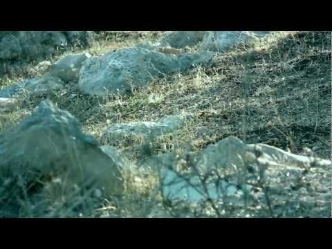 عِبَب - موسيقى الياس غرزوزي