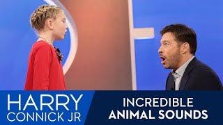 Incredible Animal Calls!