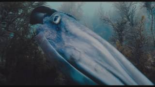 Nonton                                        Voyage Of Time  Lifes Journey 2017                                                                      Film Subtitle Indonesia Streaming Movie Download