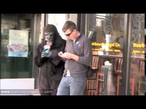 The Invisible gorilla around town