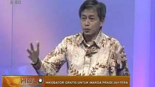 Inkubator Gratis untuk Warga Prasejahtera - Halo Indonesia, DAAI TV (18 Oktober 2015)