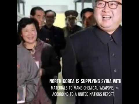 North Korea is selling material for chemical weapons to Syria, according to the United Nations