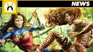 5. Wonder Woman 2 New Suit & Cheetah Details REVEALED