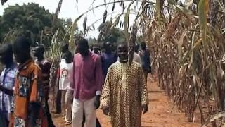 3 Monate in Burkina Faso
