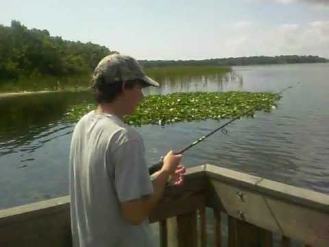 fishing lake tarpon