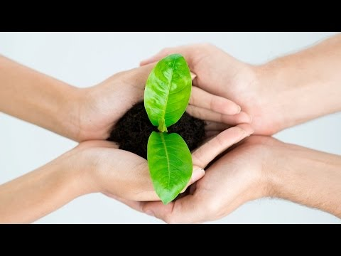 What Is Sustainable Living? | Green Living