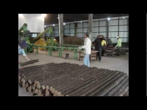 Fábrica de Briquetes com Fibra de Palma e Eucalipto