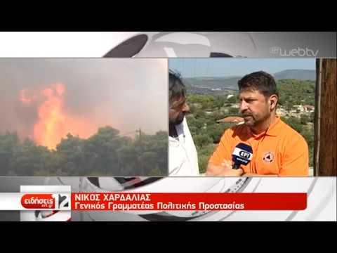 Καλύτερη η εικόνα της πυρκαγιάς σε Ζάκυνθο | 16/09/2019 | ΕΡΤ