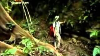Video -- Krakatoa -- documental history channel - La historia de la Tierra - parte 2 MP3, 3GP, MP4, WEBM, AVI, FLV Mei 2019