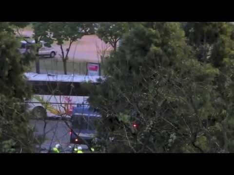 Verona - Brescia arrivo al Bentegodi degli ultras delle rondinelle