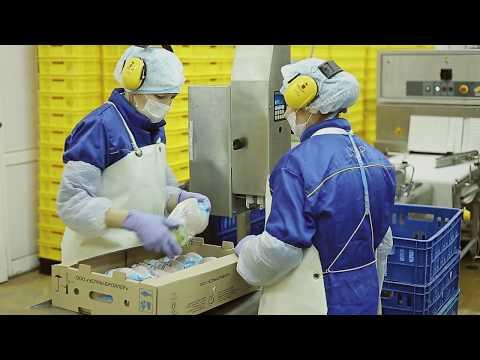 Презентационный фильм о производстве «Челны-Бройлер»