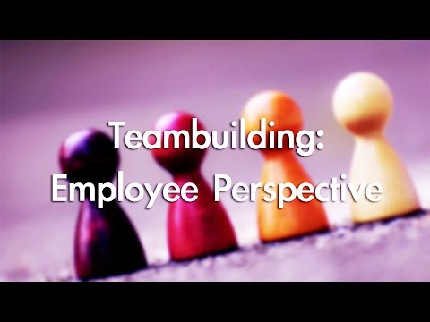 Teambuilding Interventions: Employees' Perspective