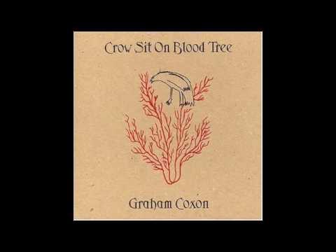 Tekst piosenki Graham Coxon - You Never Will Be po polsku