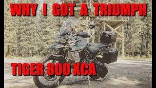 4. Why I Got A Triumph Tiger 800 XCA