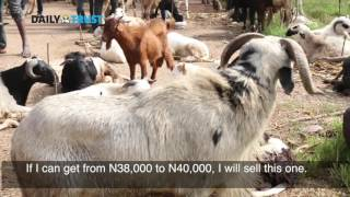 In Search of Abuja's cheapest ram