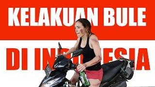 Video Kelakuan Orang Asing di Indonesia MP3, 3GP, MP4, WEBM, AVI, FLV Mei 2019