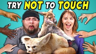 Try Not to Touch Challenge #3 | Wild Animals (React)