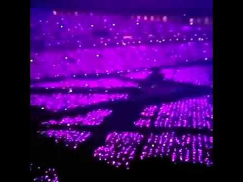 141209 Pink Ocean SNSD/ 少女時代 The Best Live At TOKYO DOME